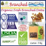 Organic Branched Dates. Deglet Noor Fresh Dates. Organic Dates. Organic Dates on The Branch 5Kg Carton
