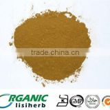 100% natural High quality Bee Propolis Powder