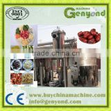 vacuum mixed fried fruit/vegetable chips chips machine for fruit processing