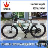 fashion hot sale 10a 250w folding aluminum frame with two wheel electric bicycle mountain bike