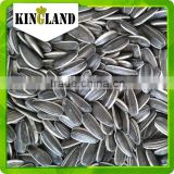 Export black sunflower seeds for oil and edible human consumption seeds