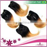 "2013 hot sale Rich Grade AAAAA brazilian virgin hair ,8""-32"" Soft body wave Natrual color ,unprocessed virgin human hair"