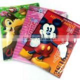 China supplier wholesale A4 file folders/custom plastic file folder                                                                         Quality Choice