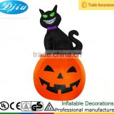 DJ-531 black cat sitting on the pumpkin inflatable halloween decor outdoor