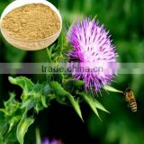 water soluble milk thistle P.E 80% silymarins CAS 84604-20-6