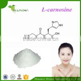 High Quality Anti-aging l-carnosine Powder Bulk