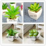 Sell Mini Artifical Succulents Plant
