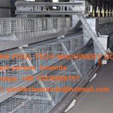 Panama Poultry Farm - A Type Battery Broiler Cage System & Battery Chicken Cage with Automatic Feeding Machine