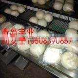 Auto Steamed Buns Flow Packaging Machine