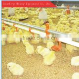 Chicken nipple drinker for floor feeding chicken raising line with high quality/Flat poultry equipment