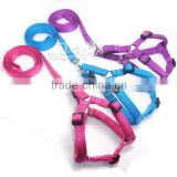 EVA padding inside comfortable nylon dog harness and leash, pink/blue/purple color dog vest and lead set