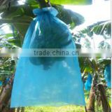 LDPE fruit bunch covers for banana cultivation