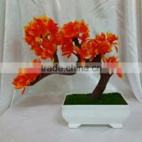 sale mini durable topiary indoor banyan tree bonsai