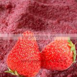 spray dried fruit juice powder