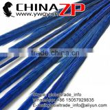 No.1 Supplier ZPDECOR Factory Exporting Directly Sale Dyed Midnight Blue Ringneck Pheasant Tail Feathers for DIY