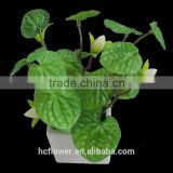 High class export imitation plants for indoor ornaments
