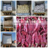 dried chili, dried chili pepper, red dried chili, new dried chili, Jinta dried chili, Yidu dried chili, ht dried chili, dried ch