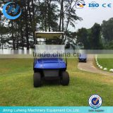 Cheap Electric Car/Passenger Car/Golf Cart