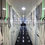 DIY Tempered Office / Shop Partitions Glass Prefabricated Decorative Sliding Door/Wall price