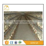 kenya chicken farm hot sale layer poultry battery layer egg chicken cage/poultry farm house design