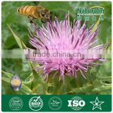 Medicinal plant Milk Thistle P.E./natural water solute Milk Thistle Extract /Silymarin 80% Milk Thistle Extract powder
