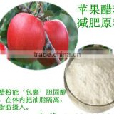 GMP factory supply best popular high quality Apple Cider Vinegar powder 5%