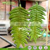 Silicone Rubber Fernwort for Dinosaur Game