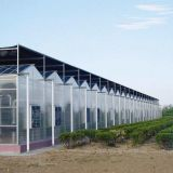 High Quality PC Sheet Covering Greenhouse with Stable Steel Structure