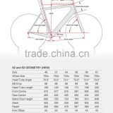 MeyerGlobal New design oem S2 carbon road bike parts china cheap bicycle frame bicicletas carbono can use 700C wheelset