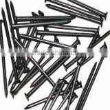 common nails for construction usage iron nails                                                                         Quality Choice
