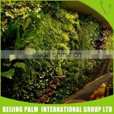 Fake Plant Wall Foliage Plants Artificial Green Wall For Garden Ornaments