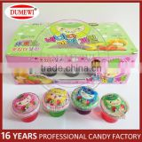 20gr Assorted Flavours Pudding Candy Mini Cup Jelly