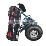 Cheap sport self balancing bicycle 2 wheels chariot kids and adults electric scooter 72V motorcycle golf cart