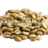 Raw Material Manufacturer Green Coffee Bean Extract