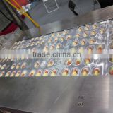 Alu-Pvc / Alu-Alu Automatic pill blister packaging,blister package machine,packer of tablets