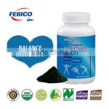 Taiwan Organic Spirulina Platensis Powder /Sources of B12, GLA and vegetable protein