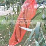 green mono filament HDPE date tree date palm mesh net bag for date cover with black drawstrings