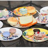 Best Selling Products Colorful Secret Garden Ceramic Bone China Plates