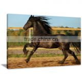 Black Horse Oil Canvas Printing Art For Livingroom and Bedroom Decor DWYS57