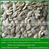 Bulk Shine Skin Pumpkin Seeds for Human Consumption