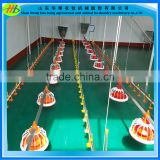 Automatic poultry farming livestock equipment feeding and drinking line for chicken house
