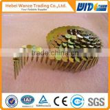 2-1/4''X.099 Screw Shank Vinyl-coated Pallet Coil Nails/Galvanized umbrella head roofing coil nails for sale