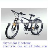 Newest fat folding electric bike with lithium