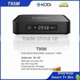 2016 Consumer Electronics 2G DDR3 Android TV Box Digital Satellite Receiver T95M Android TV Box