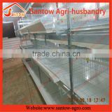 A and H type automatic chicken coop cages in tiers for poultry house broiler