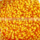 Canned Soybean