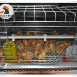 Salvador Poultry Farming Baby Chick Cage & A Frame Automatic Small Chicken Cage & Pullet Coop with Feed Trough for 5000 Chicks in Chicken Shed