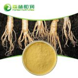 Organic certified panax ginseng extract ginsenosides msds