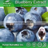 Best Selling Blueberry Extract Concentrate Powder Anthocyanins 15% 25%--NutraMax Supplier