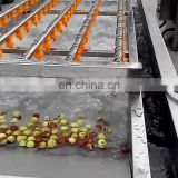 vegetable washing machine industrial bubble washing machine vegetable washing line
